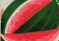 vintage watermelon